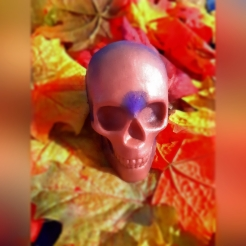 Death by Soap - Are you interested in bathing with the skull of your enemy or perhaps you are just looking for the skull of your dreams? Look no further than our Death by Soap soap. Message us with what sort of customization you are looking for and we will light up our fires and stir our cauldrons as we attempt to make your wish come true. Available in our shop for $6.